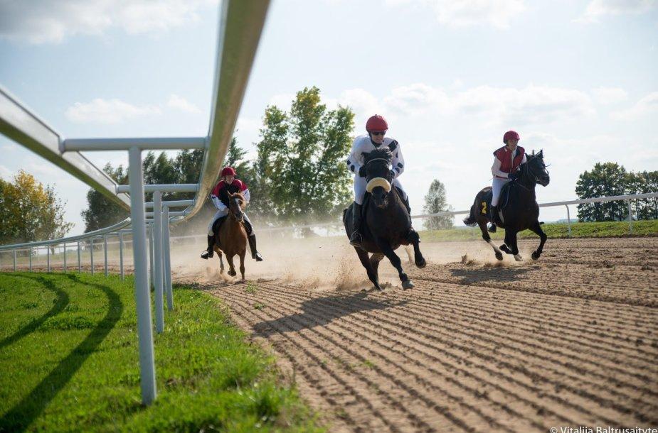 Žirgų lenktynės Raseinių hipodrome
