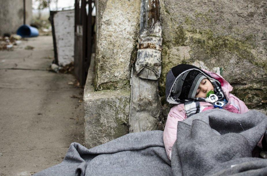 Sergantis vaikas iš Irako, apklotas Jungtinių Tautų  suteiktais apklotais. Gydytojai sako, kad daugumą mažamečių kankina blusos ir kiti parazitai.