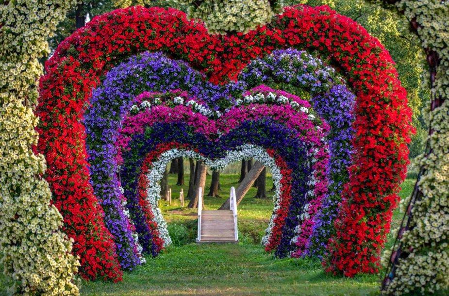 """Gėlių festivalis """"Vasarvidžio nakties sapnas"""""""