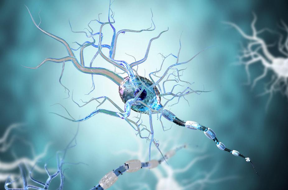 Neuronai