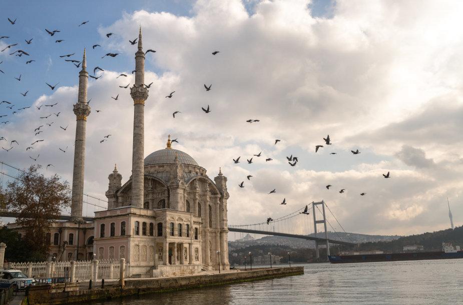 Mečetė Stambule