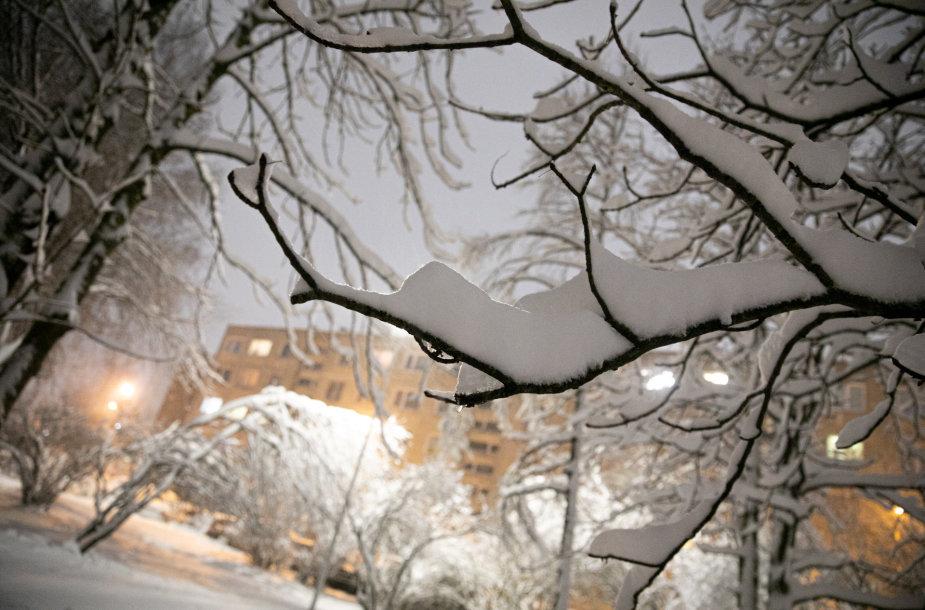 Daugiabučio kiemas žiemą