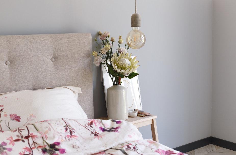Kokias gėles rinktis Tėvo dienai, į namus ar netgi lovą?