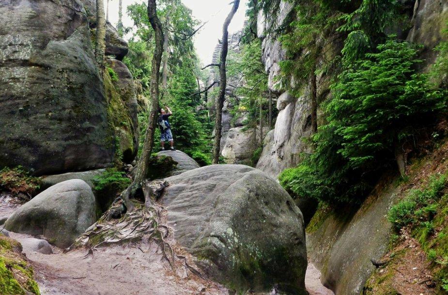 Čekijos Adršpadų-Teplicės nacionalinio parko grožybės