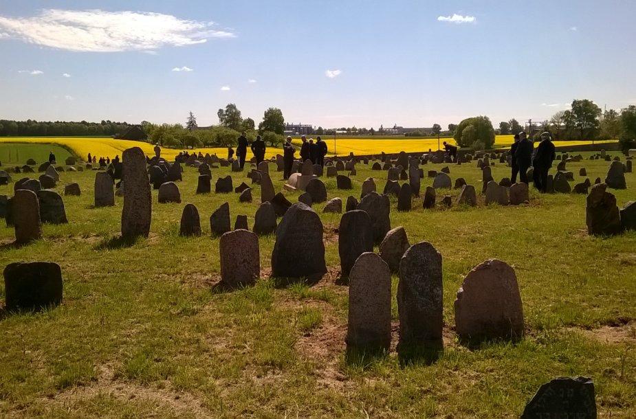 Senosios Šeduvos žydų kapinės