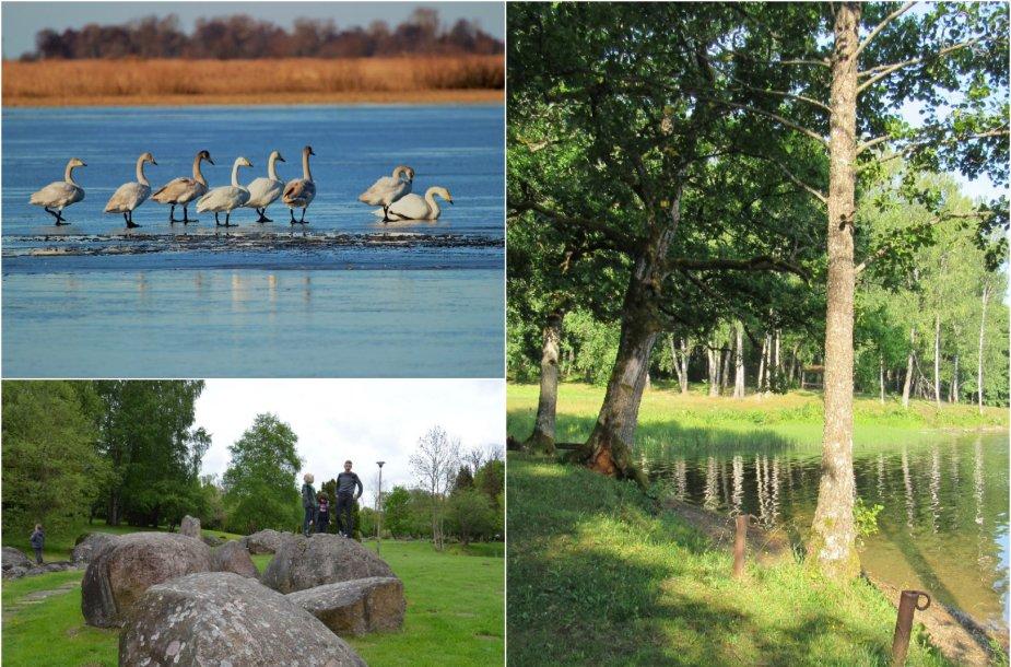 Lietuvos gamta