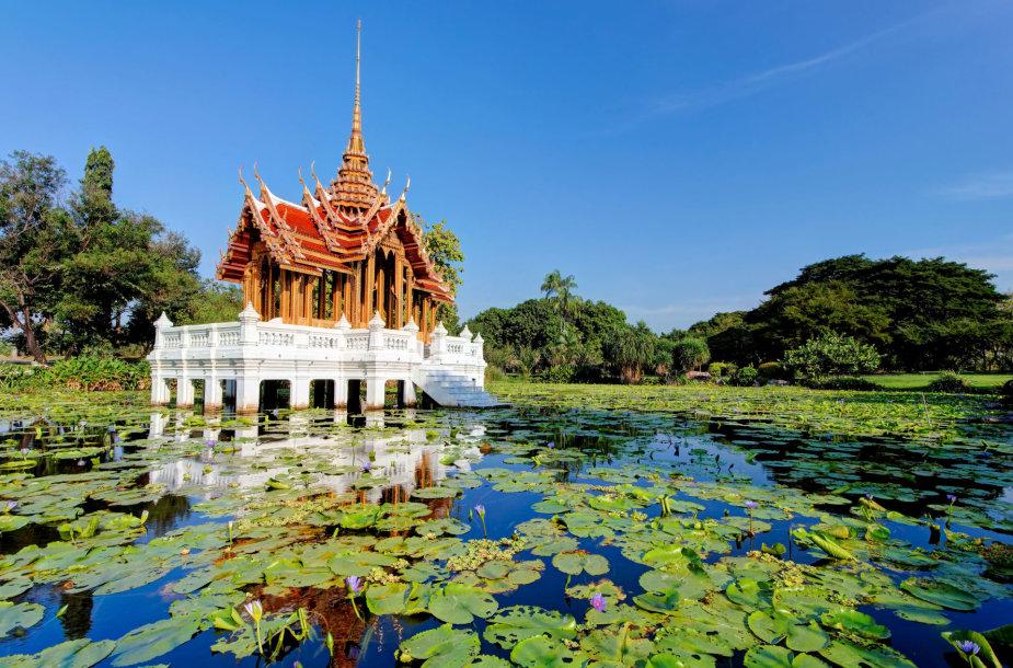 Svajingas lotosų ežeras Tailande