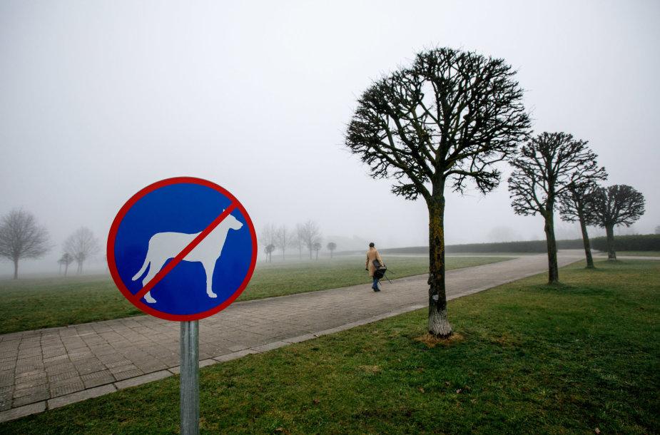 Šunis vedžioti draudžiantis ženklas