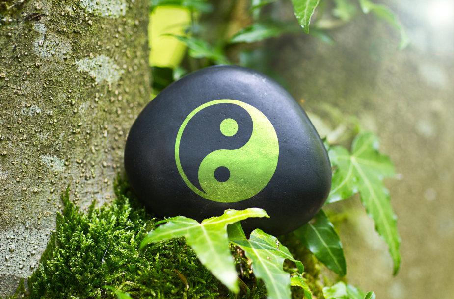 """""""Yin ir Yang"""""""
