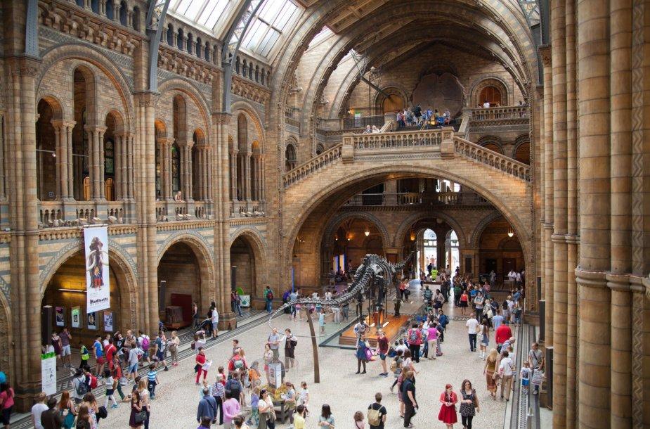 Nacionalinis istorijos muziejus Londone