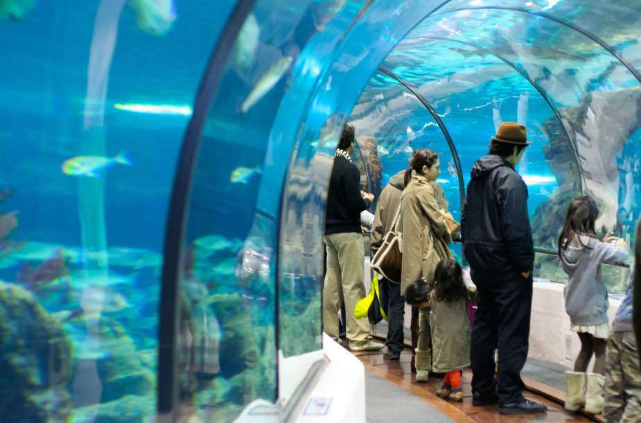 Barselonos akvariume esantis tunelis