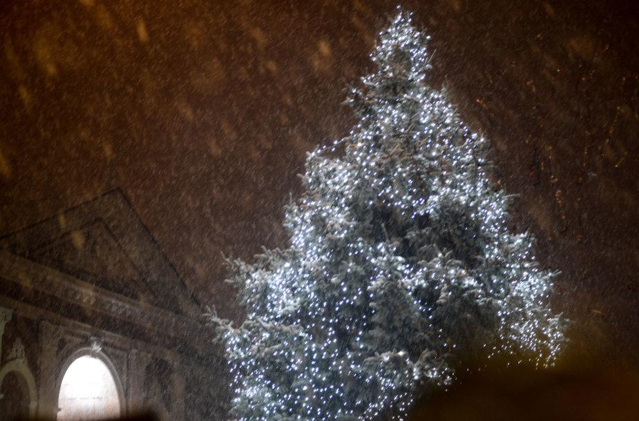 Klaipėdoje įžiebta Kalėdų eglė