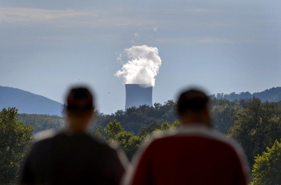 Atominė jėgainė Šveicarijoje