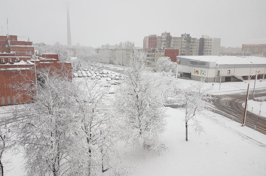 Sniegas Velykų rytą Vilniuje