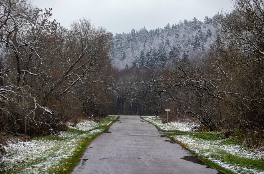 Lengva sniego paklotė apdengė Neries regioninį parką