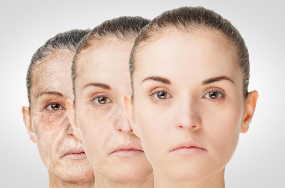 Senėjimo procesas