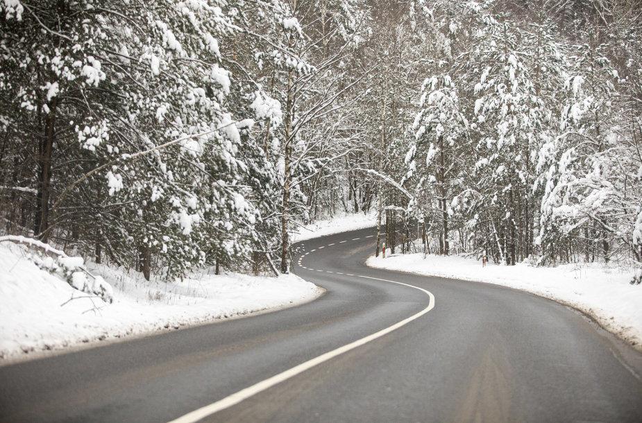 Kelias žiemos metu