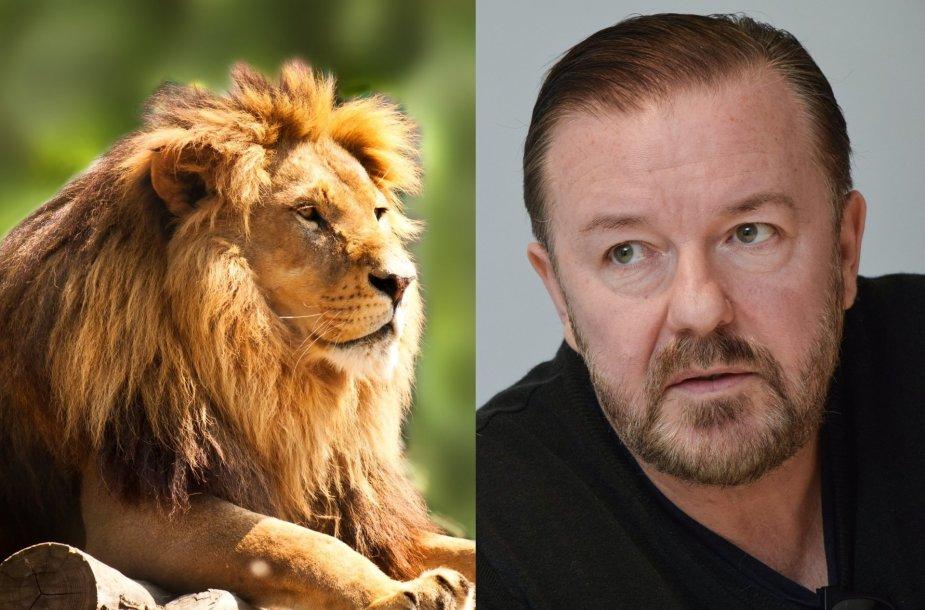 Liūtas ir Ricky Gervaisas
