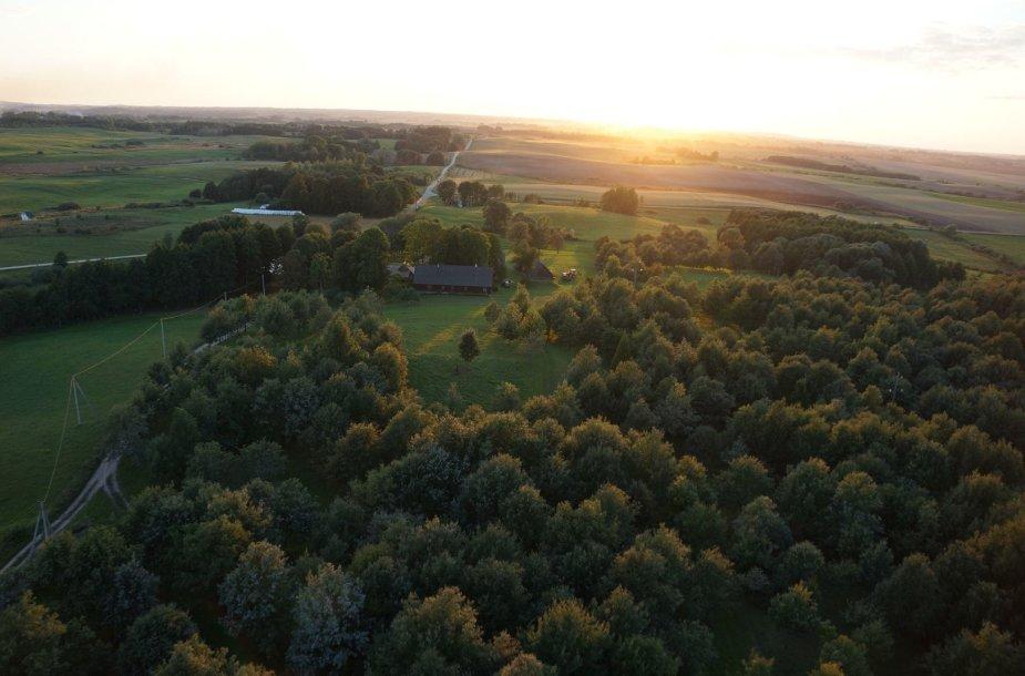 Lietuvos tautinio atgimimo ąžuolynas ir Jono Basanavičiaus gimtinė