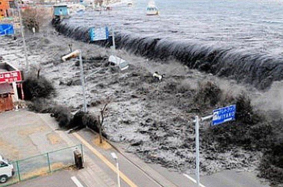 Cunamio pradžia Japonijoje