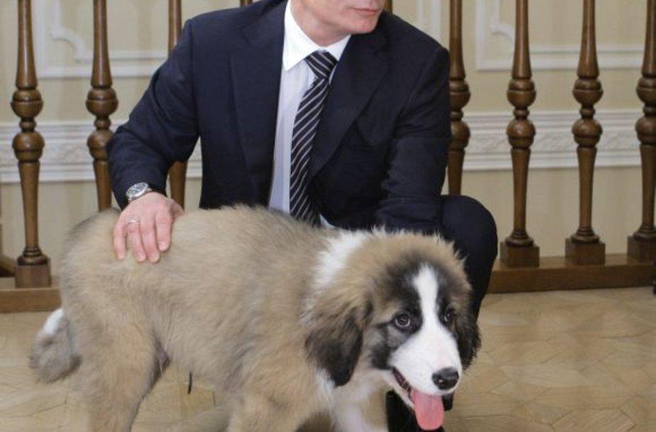 Vladimiras Putinas ir jo augintinis Bafis