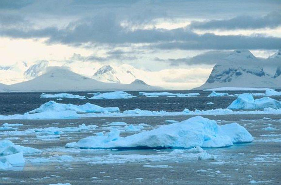 Antarktidoje sudužo vienas iš dviejų poliarininkus aprūpinusių lėktuvų.