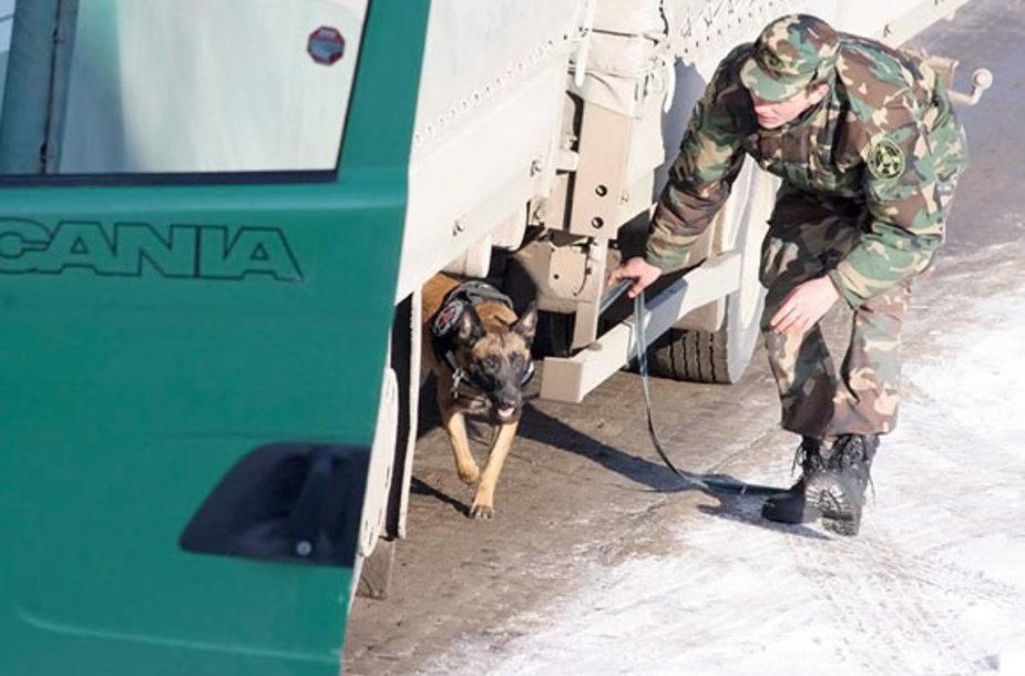 Šiuo metu pasieniečiams talkina beveik 160 tarnybinių šunų