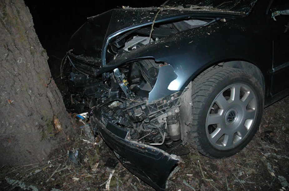 Į medį įsirėžęs automobilis