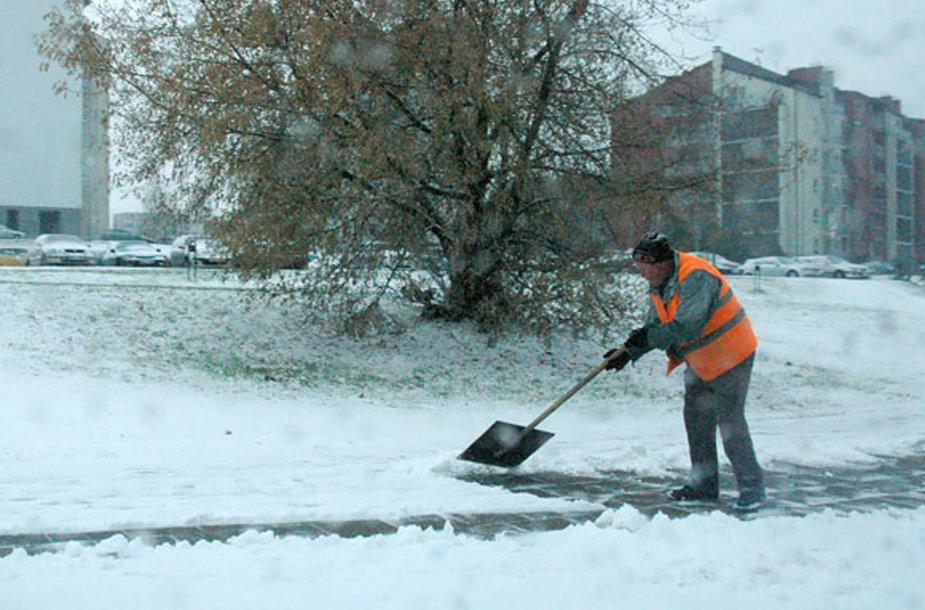 Kiemsargis kasa sniegą