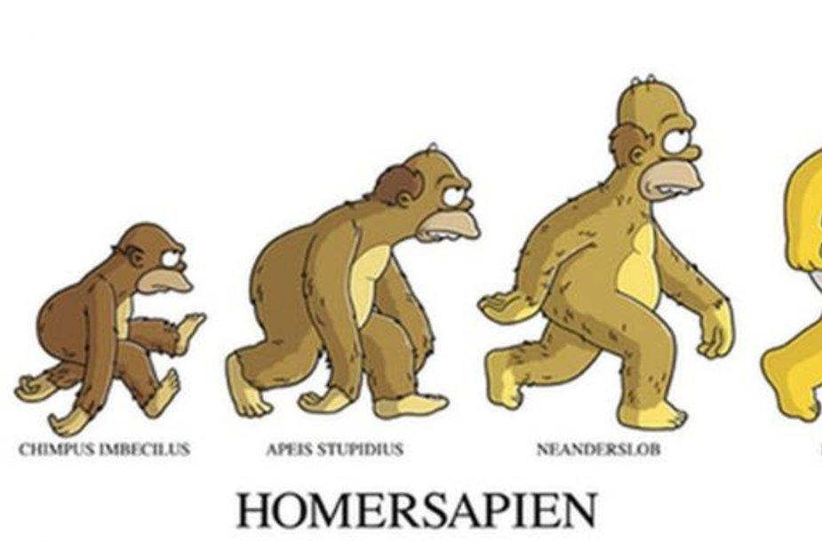 Homersapiens evoliucija