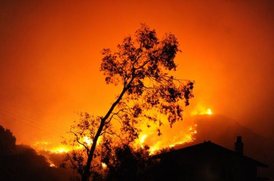 Kalifornijoje toliau siaučia gaisrai