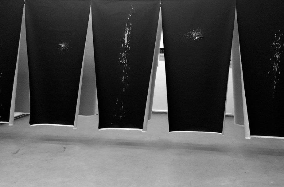 """Fotografė Gabrielė Vingraitė kviečia į savo kūrybos parodą """"Trajektorijos""""."""