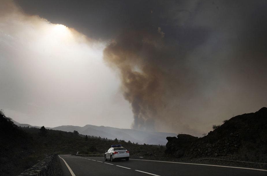 Kanarų salas niokoja miškų gaisrai.
