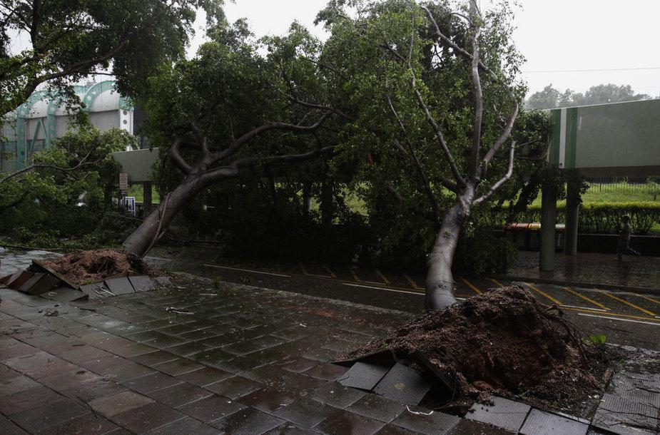 Smarkus taifūnas Honkonge rovė medžius.