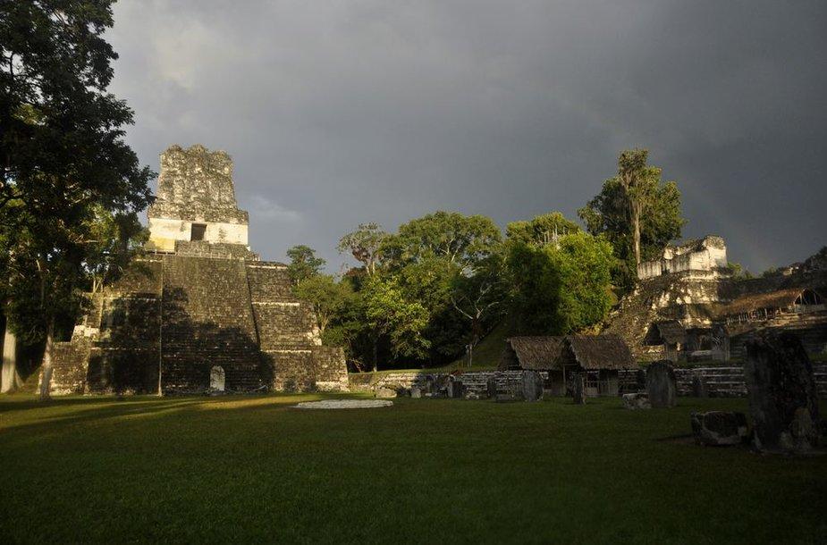 Šventykla buvusio didžiausio senovės majų miesto Tikalio griuvėsiuose