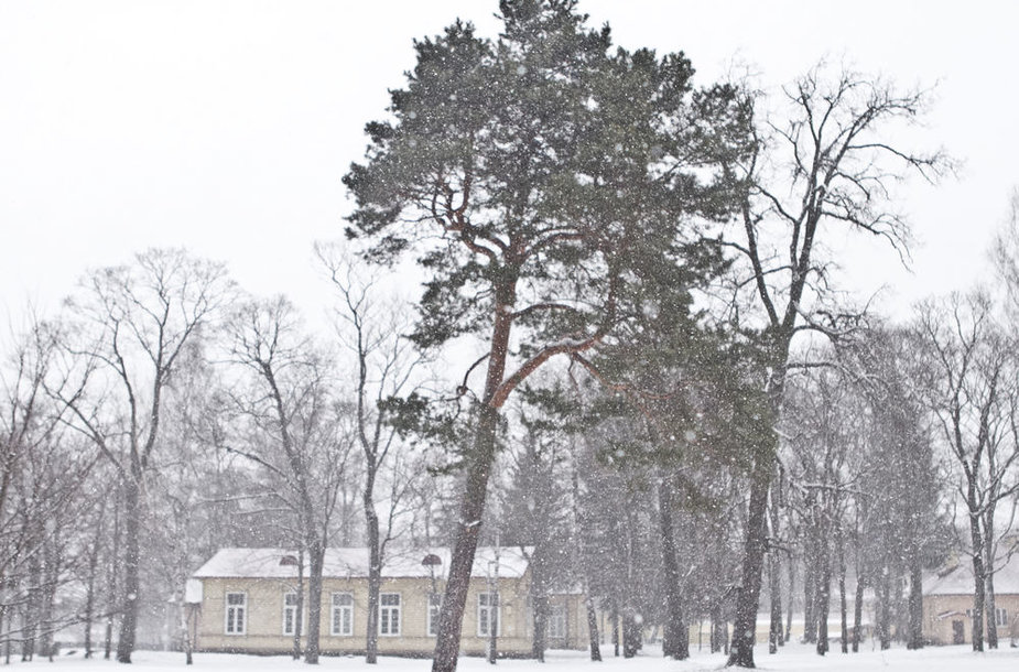 Į Vilnių sugrįžta žiema
