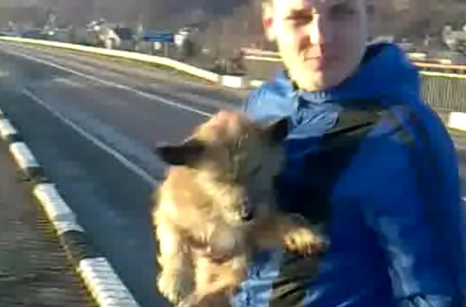 Šuns egzekucija