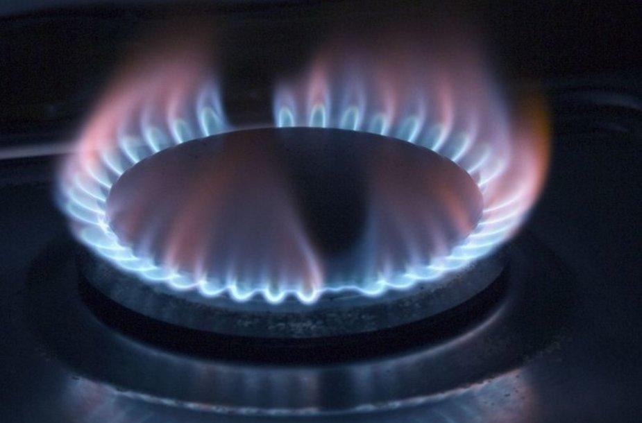 Dujų tiekimas bus nutrauktas rugsėjo 2 ir 3 dienomis.