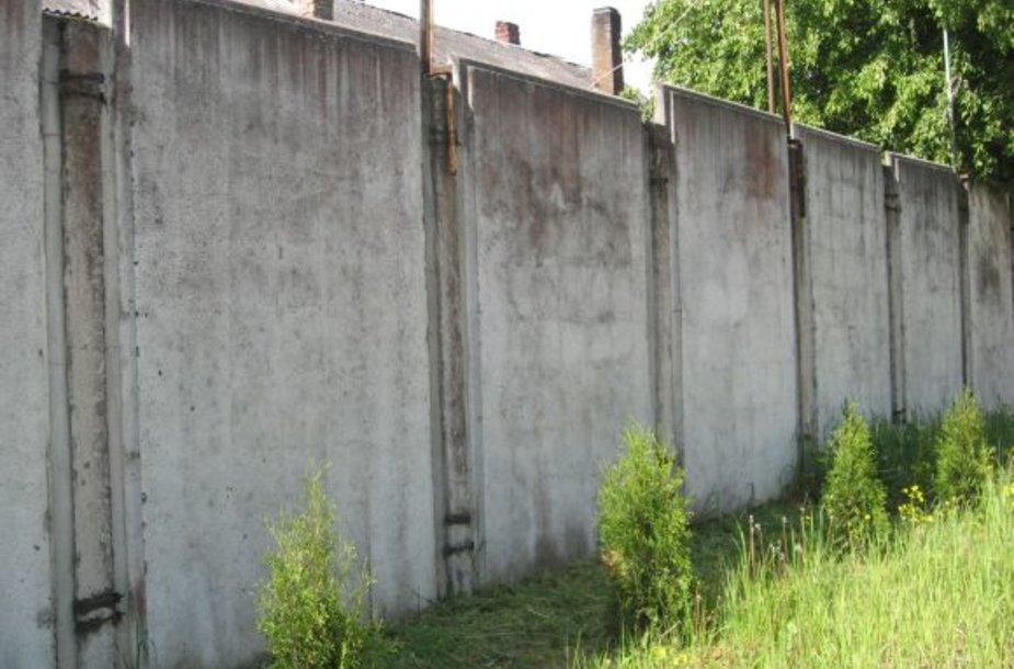 Seniūnijos administracinio pastato teritoriją juosianti niūri siena atiduota grafitininkų fantazijai.