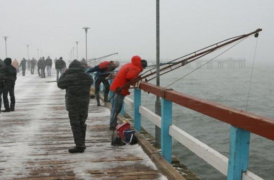 Žvejai jau treniruojasi stintų gaudymo rungčiai.