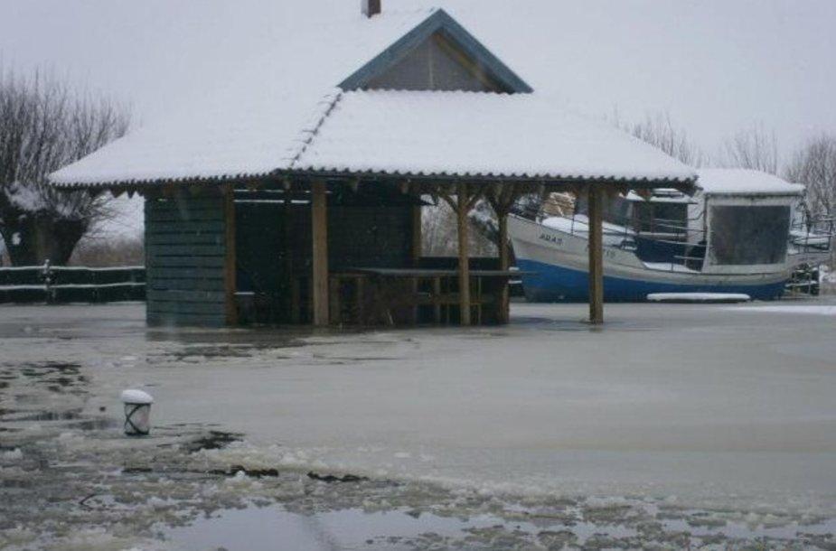 Plikšnių sodybą stingdo sušalęs potvynio vanduo.