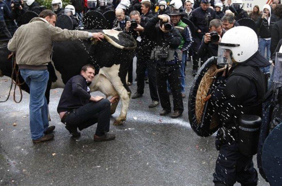 Per streiką Briuselyje policininkams teko atlaikyti pieno ataką