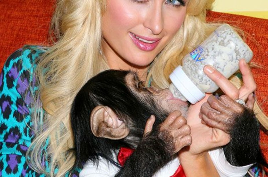 Foto naujienai: Paris Hilton. Nusibodusios garsenybės