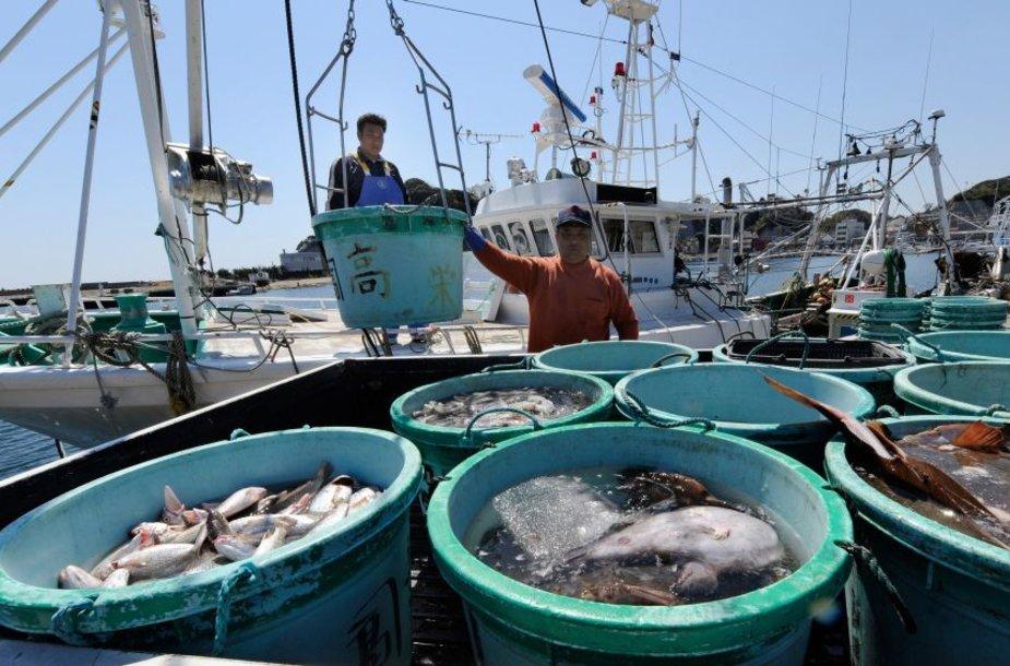 Net ir praėjus daugiau kaip metams nuo nelaimės, žuvyje aptinkama raadiacinių dalelių.