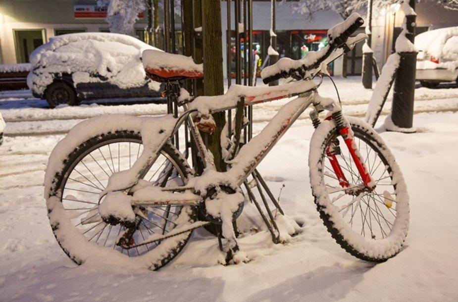 Vokietija sulaukė žiemos.