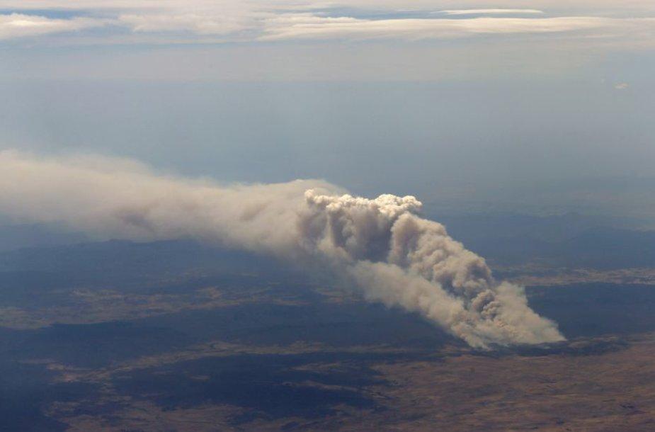 Australiją siaubia krūmynų gaisrai.
