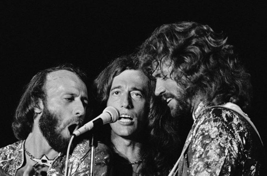 """Grupės """"Bee Gees"""" nariai (iš kairės) Maurice'as, Robinas ir Barry Gibbai 1979 metais vykusiame koncerte"""