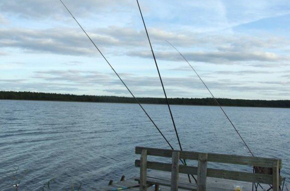 Lieptai gegužės mėnesį tampa puikiu placdarmu meškerioti įvairias žuvis, nes nuo jų labai patogu užmesti jauką