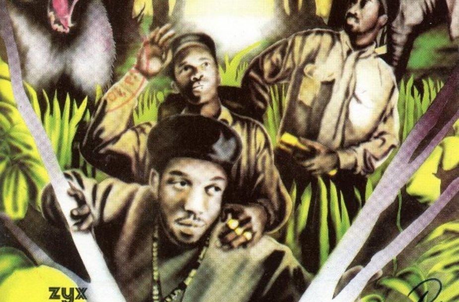 """Jungle Brothers"""