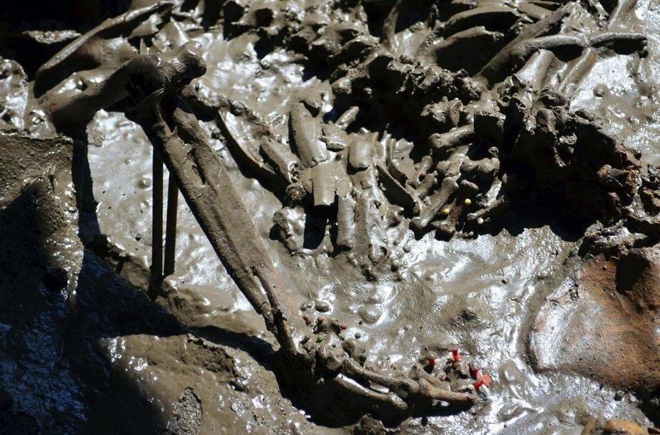 Žmonių kaulai